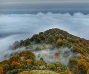 سفر به الیمستان ، جنگل رویایی آمل