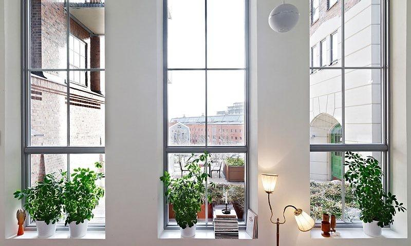 پنجره هافمن